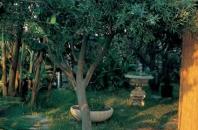 Vacanze presso Hotel Casa Nicola Sant' Angelo