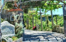 Offerte Hotel Villa Cimmentorosso Forio di Ischia
