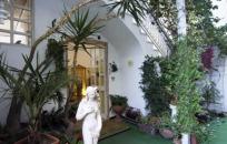 Vacanze presso Hotel Villa Diana Ischia