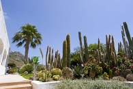 Vacanze presso Hotel Villa Miralisa Forio di Ischia