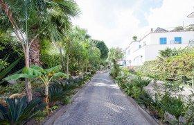 Vacanze presso Grand Hotel delle Terme Re Ferdinando Ischia