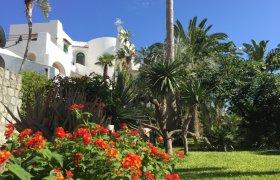 Offerte Paco Residence Forio di Ischia
