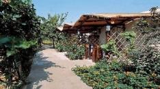Last Minute Residence Villa Marinu' Forio di Ischia